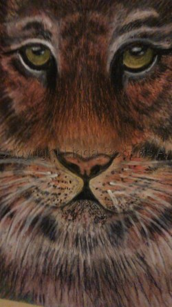 Tiger (Oil Pastels)